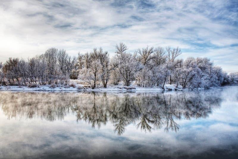 Río del bosque del invierno fotos de archivo