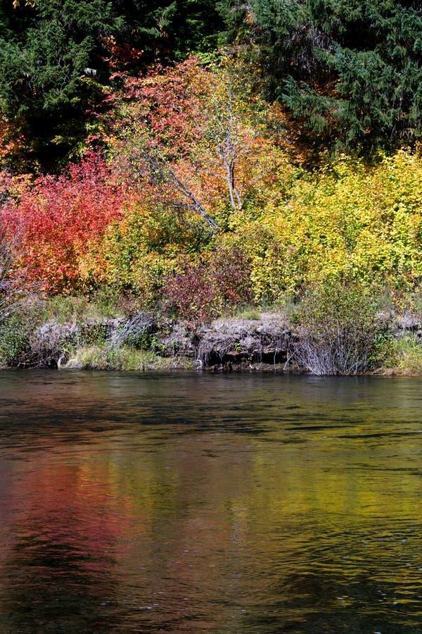 Río del colorete en otoño fotos de archivo