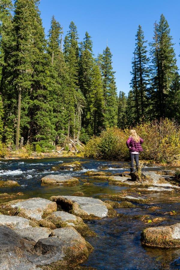 Río del colorete, Oregon fotografía de archivo