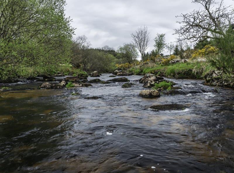 Río del este del dardo en el parque nacional de Dartmoor en Devon County en Inglaterra imagen de archivo