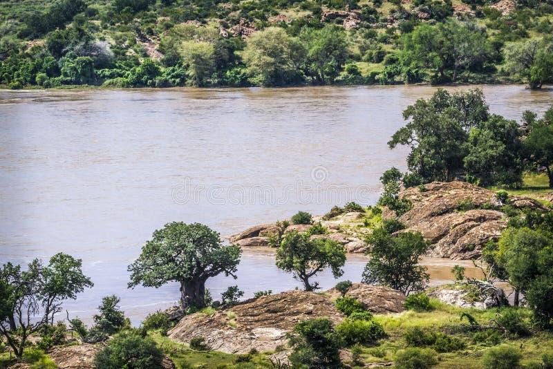 Río del Limpopo en el parque nacional de Mapungubwe, Suráfrica foto de archivo