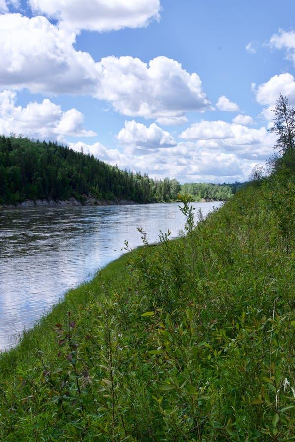 Río del norte de Saskatchewan, Alberta, Canadá fotos de archivo