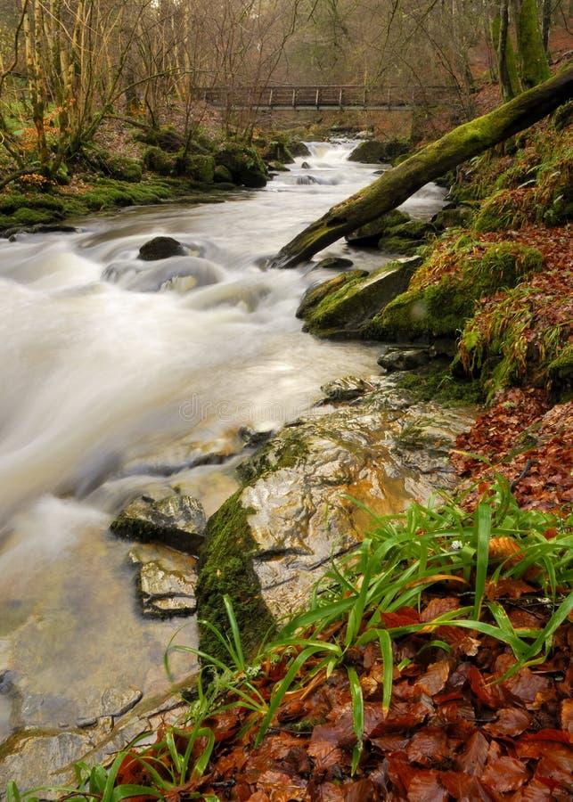 Río del otoño en Escocia imagen de archivo