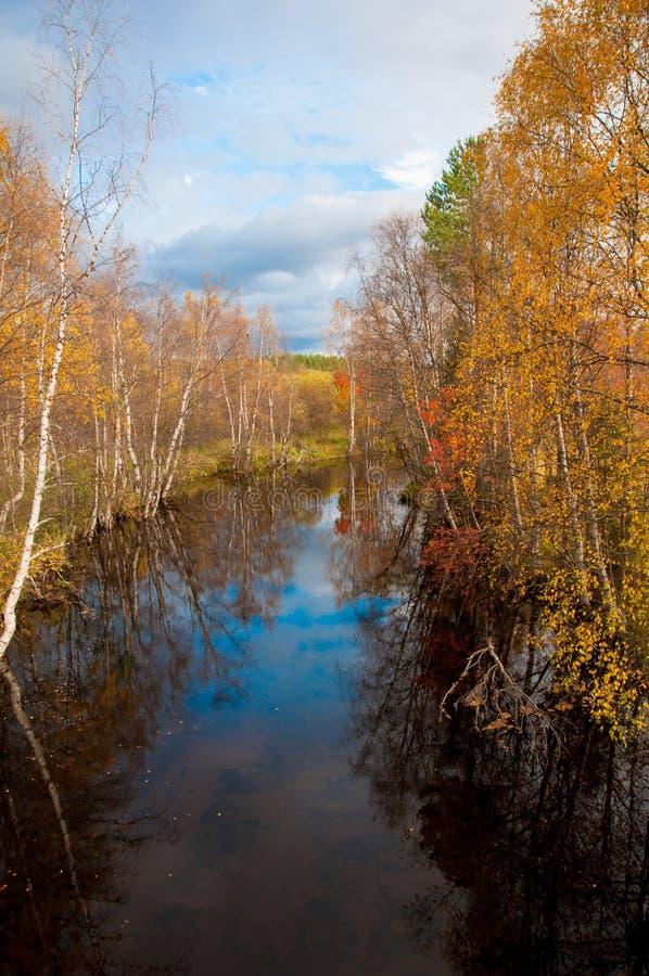 Río del otoño entre los árboles imágenes de archivo libres de regalías