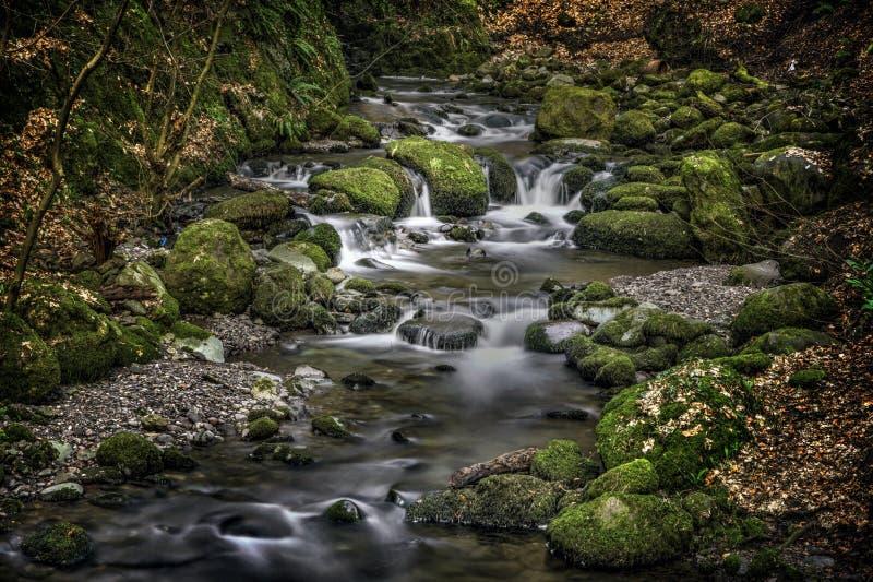 Río dramático, Alva Glen Scotland imagen de archivo libre de regalías