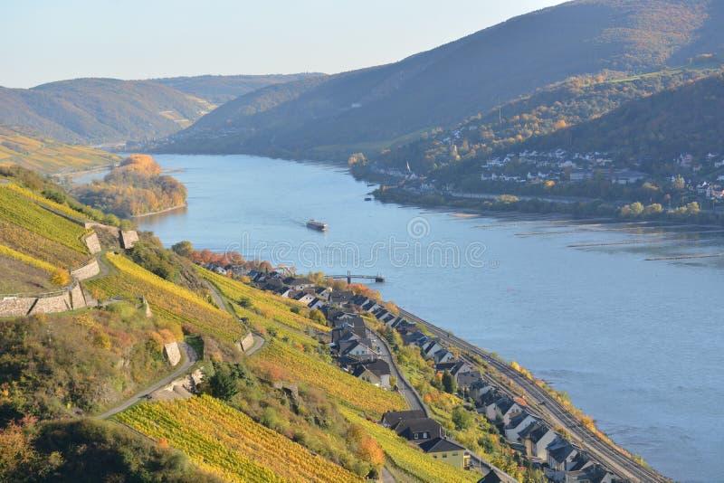 Río el Rin con las hojas de oro fotografía de archivo