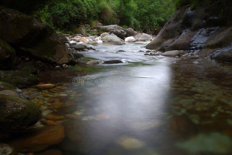 Río en el mesón de Toscana que el bosque de los apuans encadena imágenes de archivo libres de regalías