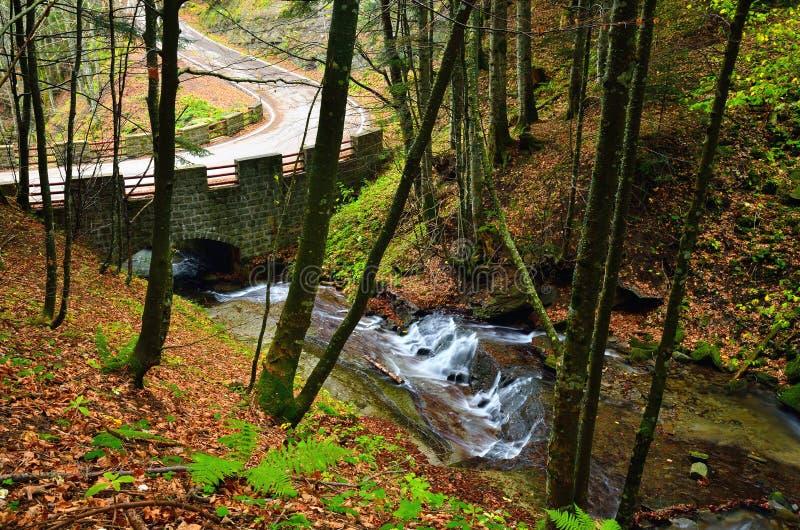 Río en el parque imagen de archivo libre de regalías