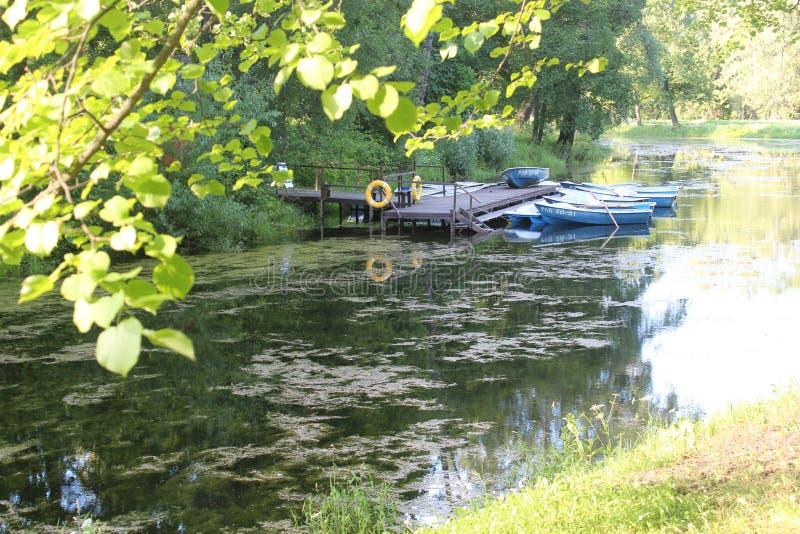 Río en el parque de Pavlovsk fotos de archivo libres de regalías
