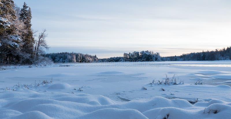 Río en invierno fotografía de archivo