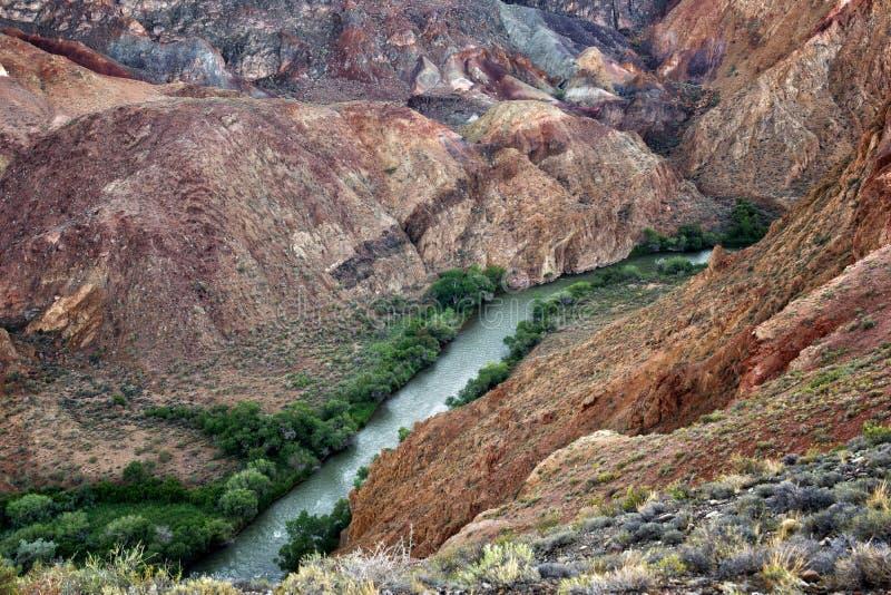Río en la barranca de Charyn fotografía de archivo