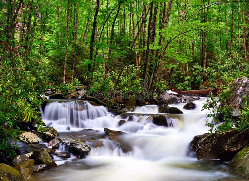 Río en las montañas ahumadas imagen de archivo