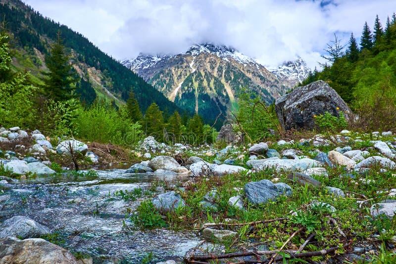 Río en las montañas de Svaneti en la primavera imágenes de archivo libres de regalías