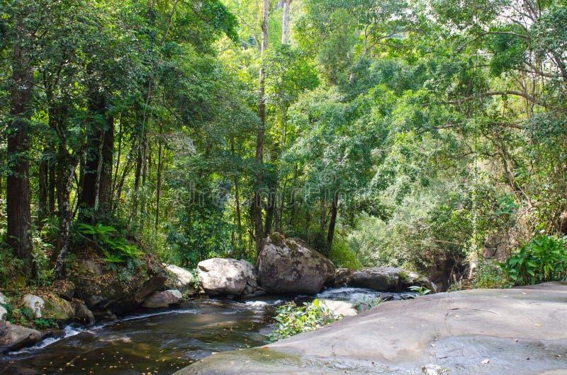 Río en las selvas tropicales de Indochina foto de archivo libre de regalías