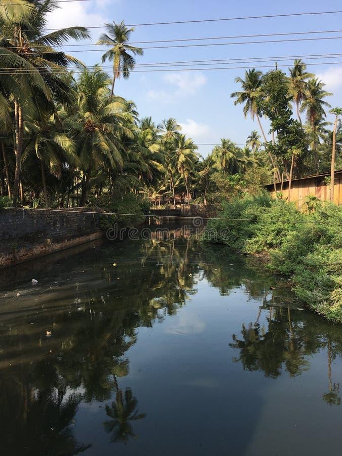 Río en las zonas tropicales fotos de archivo libres de regalías