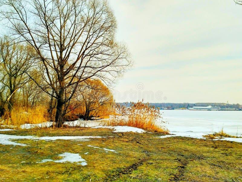 Río en Moscú imagen de archivo