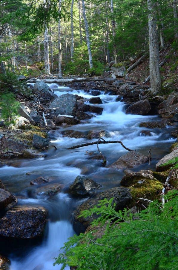Río en parque nacional del Acadia fotografía de archivo libre de regalías