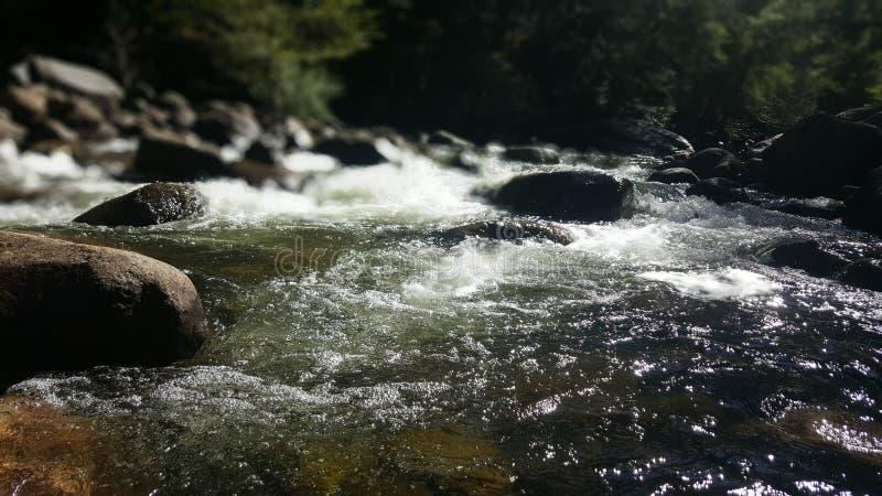 Río en Yosemite fotografía de archivo