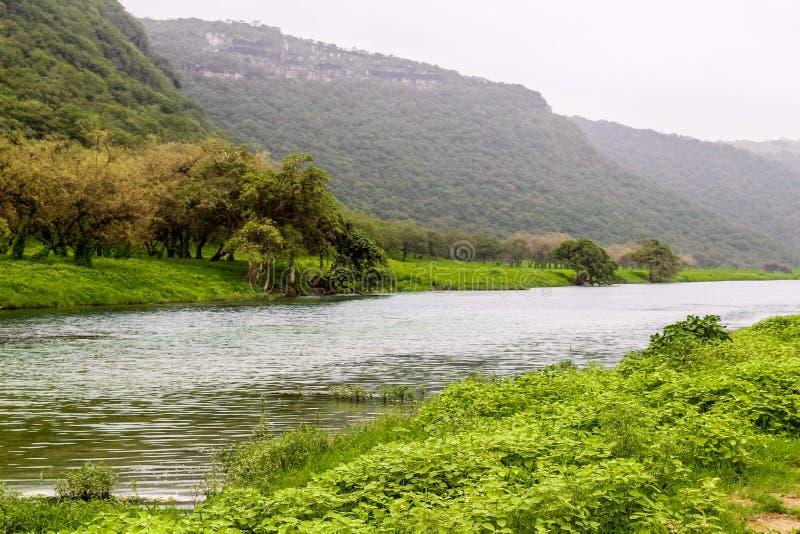 R?o entre el paisaje verde enorme, los ?rboles y las monta?as de niebla en el centro tur?stico de Ayn Khor, Salalah, Om?n imagen de archivo libre de regalías