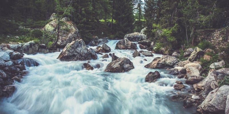 Río Estrecho En Montañas Rodeado De Árboles Y Grandes Hombros fotografía de archivo libre de regalías