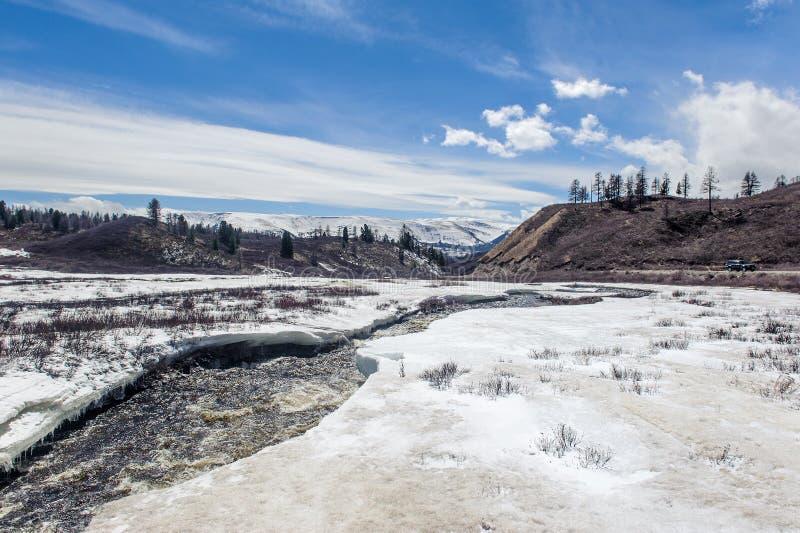 Río estrepitoso en las montañas de Altai fotos de archivo libres de regalías
