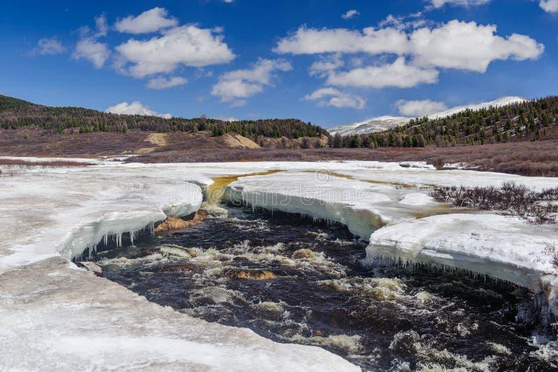 Río estrepitoso en las montañas de Altai foto de archivo