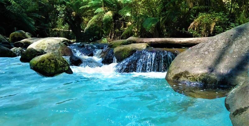 Río hermoso del agua azul en el bosque fotografía de archivo