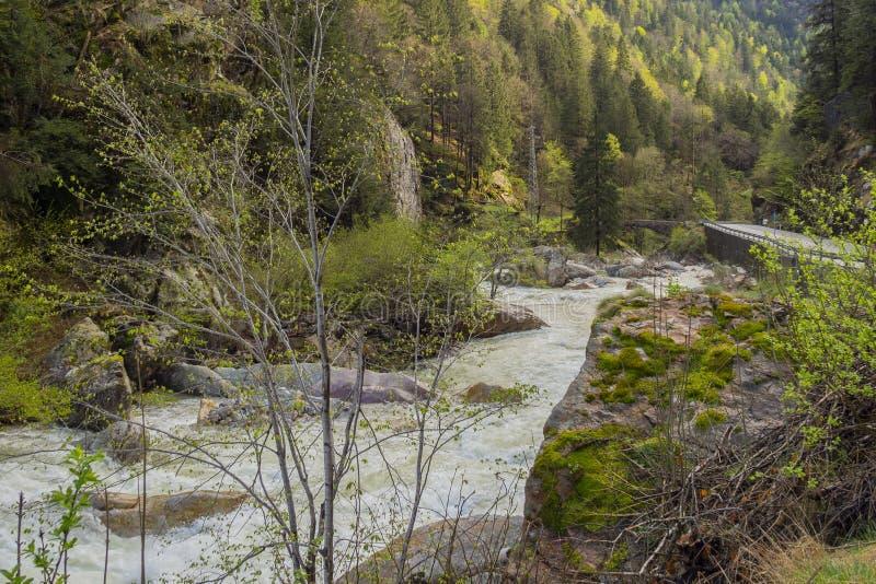 Río hinchado Brembo en primavera imagen de archivo