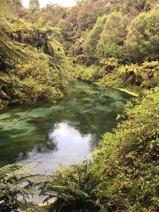 Río imponente en Nueva Zelanda imágenes de archivo libres de regalías