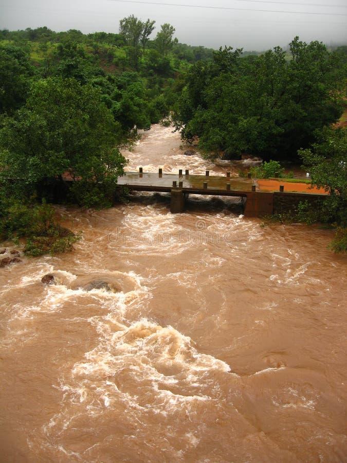 Río inundado en campo fotos de archivo