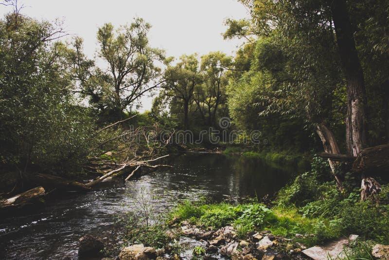 Río Kashirka fotos de archivo