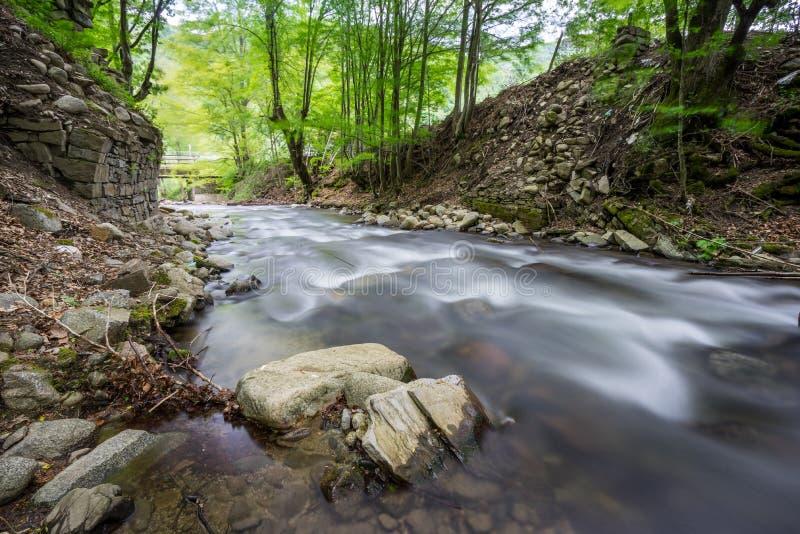 Río Kostina imagen de archivo