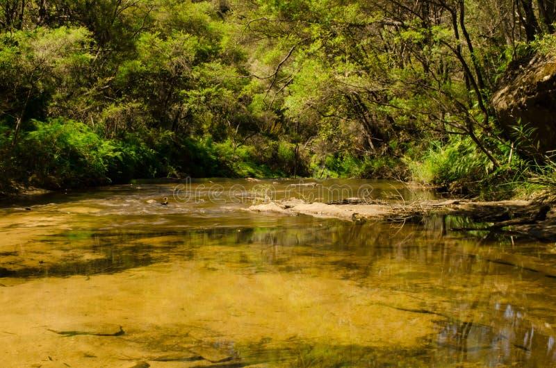 Río lentamente que fluye fotos de archivo