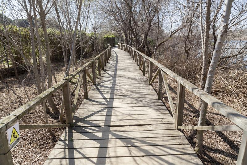 Río natural de Llobregat del delta del área, cerca del EL Prat-Barc del aeropuerto fotos de archivo libres de regalías