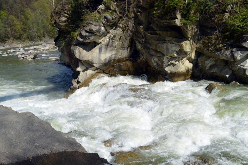 Río Prut de la montaña en Cárpatos foto de archivo libre de regalías