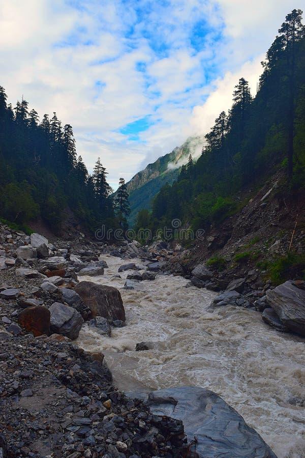 Río Pushpavati en viaje al valle de flores, Uttarakhand, la India fotografía de archivo libre de regalías