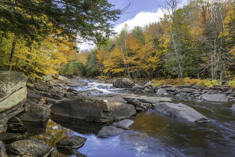 Río que atraviesa un bosque en el otoño - Ontario, Canadá imagen de archivo libre de regalías