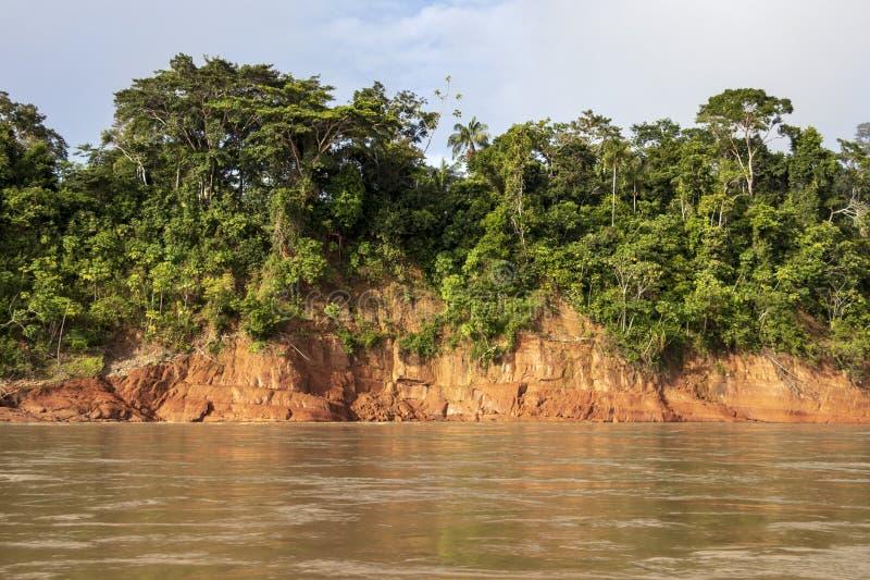 Río que flota a través de la selva tropical verde, Bolivia, parque nacional de Madidi en la hora de oro fotografía de archivo libre de regalías