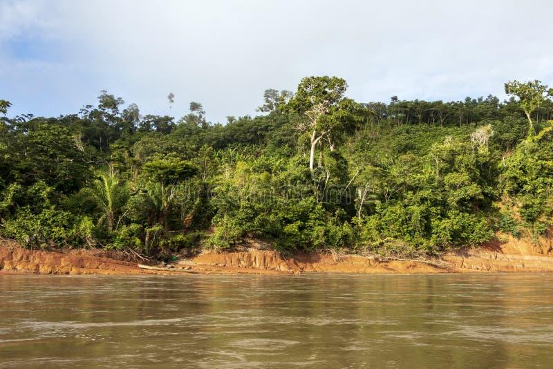 Río que flota a través de la selva tropical verde, Bolivia, parque nacional de Madidi en la hora de oro fotografía de archivo