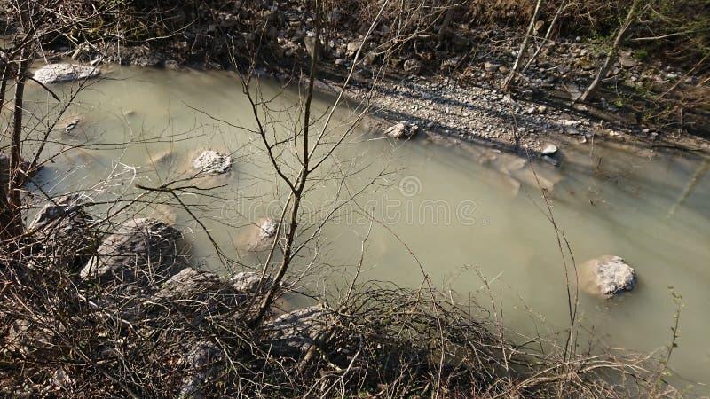 Río que fluye en un bosque fotografía de archivo