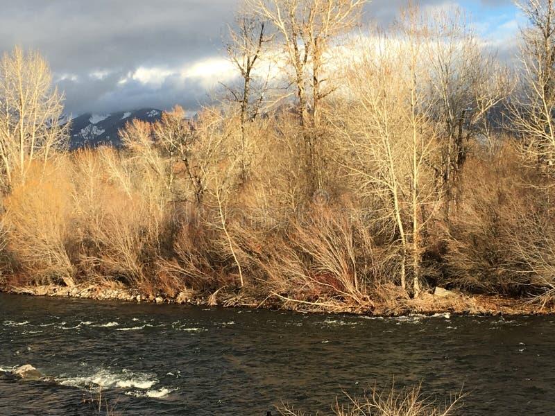 Río salmonero en Idaho imágenes de archivo libres de regalías