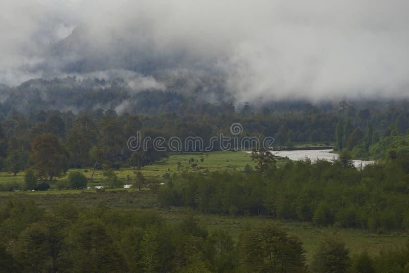 Río Simpson a lo largo del Carretera austral en la Patagonia, Chile imágenes de archivo libres de regalías