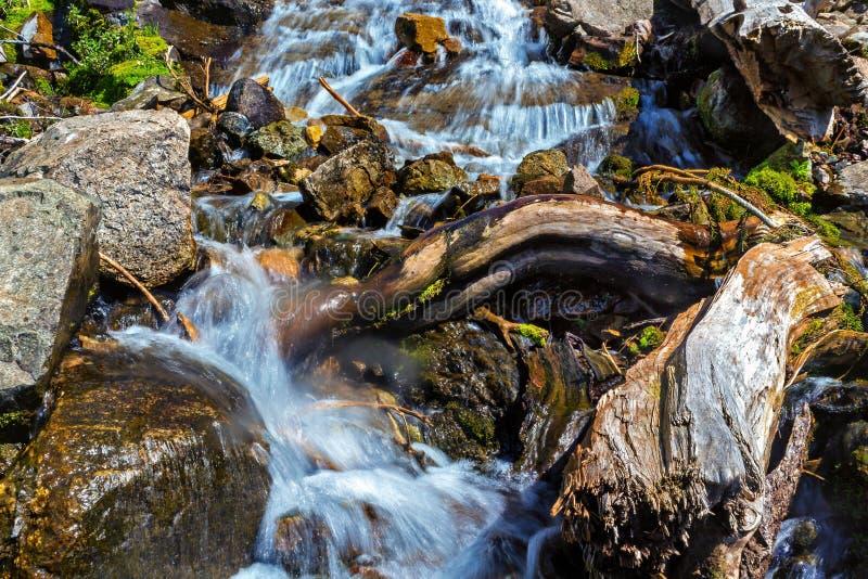 Río tempestuoso de la montaña con un inicio de sesión el primero plano foto de archivo libre de regalías