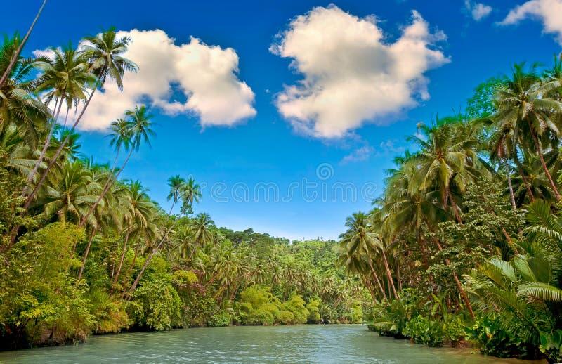 Río tropical fotografía de archivo libre de regalías