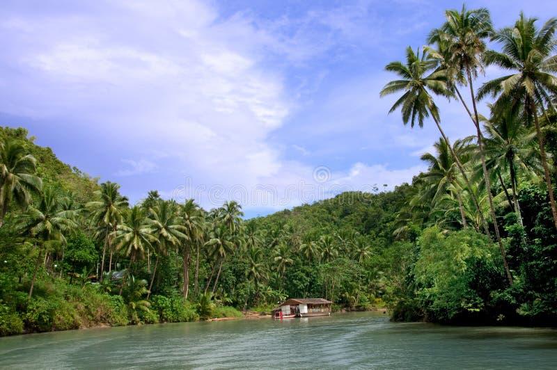 Río tropical de la selva imagenes de archivo