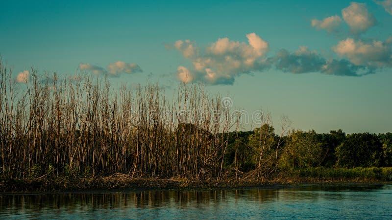 Río y árboles y nubes secos del otoño fotos de archivo