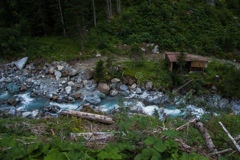 Río y troncos, registros foto de archivo libre de regalías