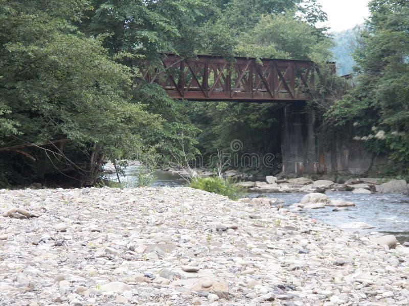 Río Zhdenevka de la montaña fotos de archivo libres de regalías