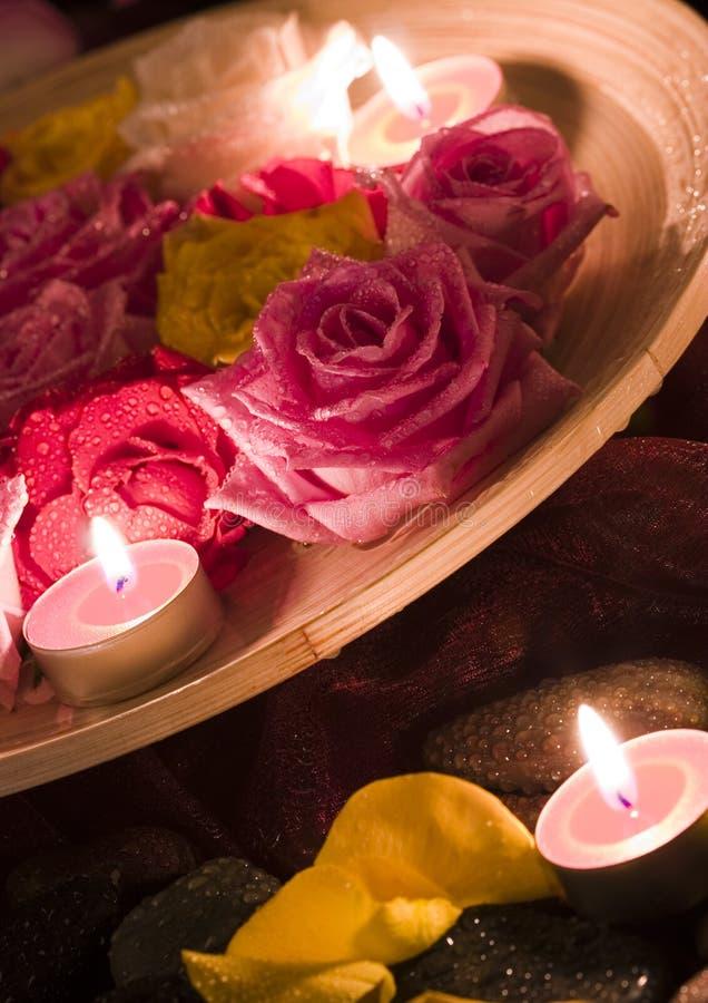 różę zen. obrazy stock
