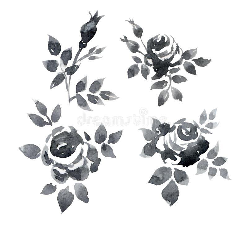 Róż gałąź royalty ilustracja